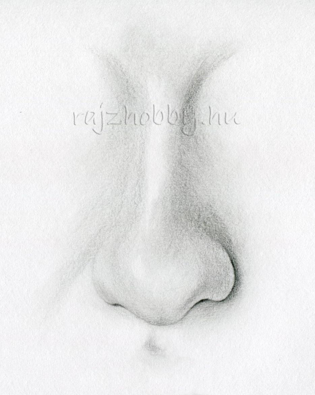 Bónuszok - Orr rajzolás - Hobby Rajz
